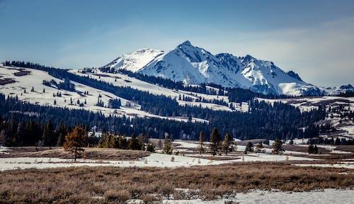 Gratis lagerfoto af alpin, bjerg, bjerge, bjergtinde