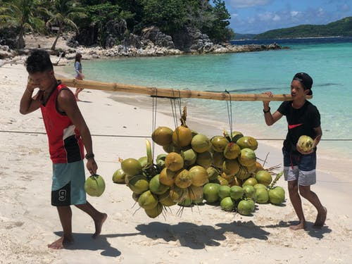Men Carrying Coconuts