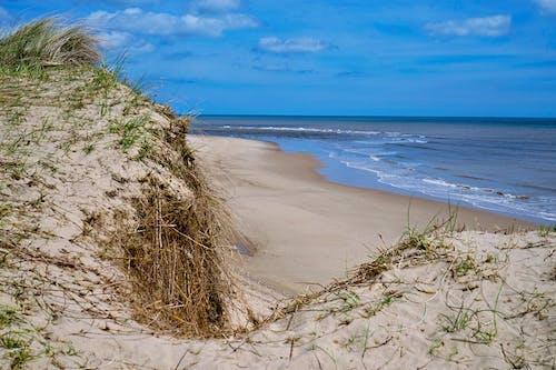 Gratis arkivbilde med blå himmel, blått hav, havkyst, sand