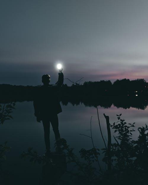 Ingyenes stockfotó ég, éjszaka, este, fák témában