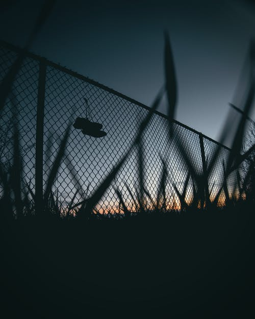 Photo of Chain-link Fence During Dawn