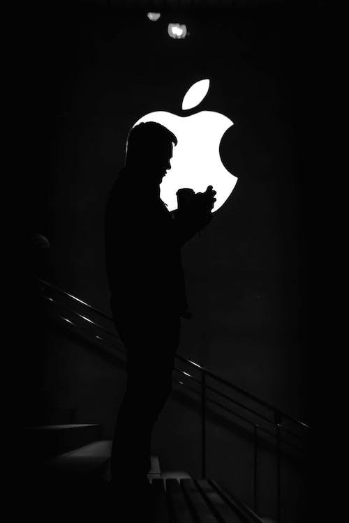 achtergrondlicht, afgetekend, appel