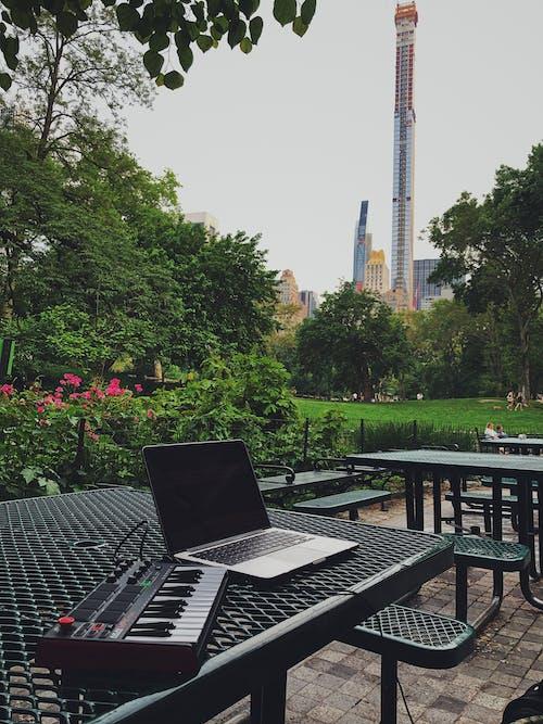 Fotos de stock gratuitas de al aire libre, árbol, arboles, arquitectura