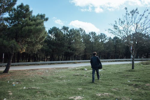 Foto stok gratis berjalan, jalan, laki-laki, pohon