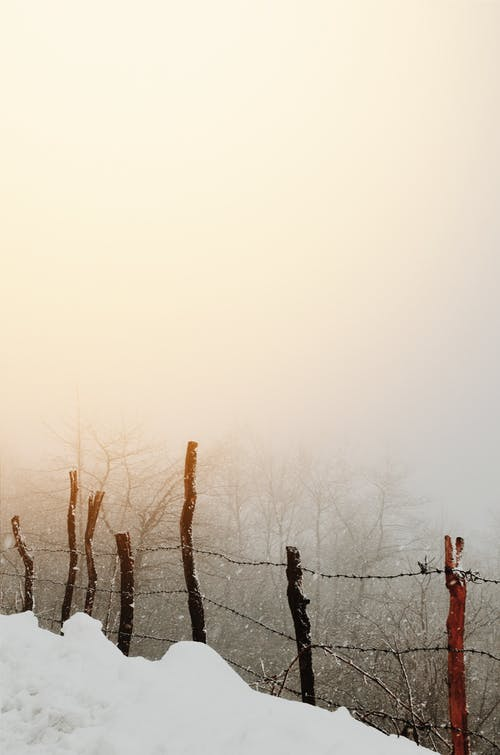 Ilmainen kuvapankkikuva tunnisteilla aita, este, kylmä sää, lumi