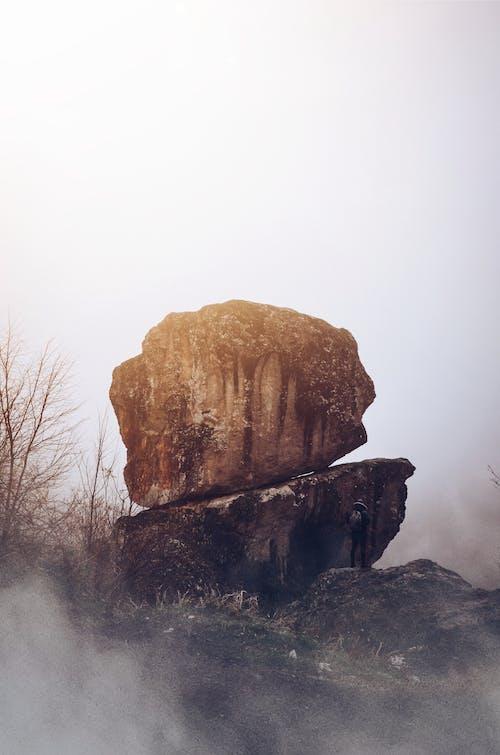 겨울, 경치, 고독, 날씨의 무료 스톡 사진