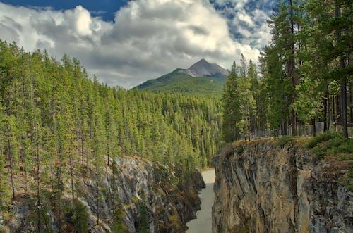 Gratis lagerfoto af å, Alberta, athabasca, athabasca falder