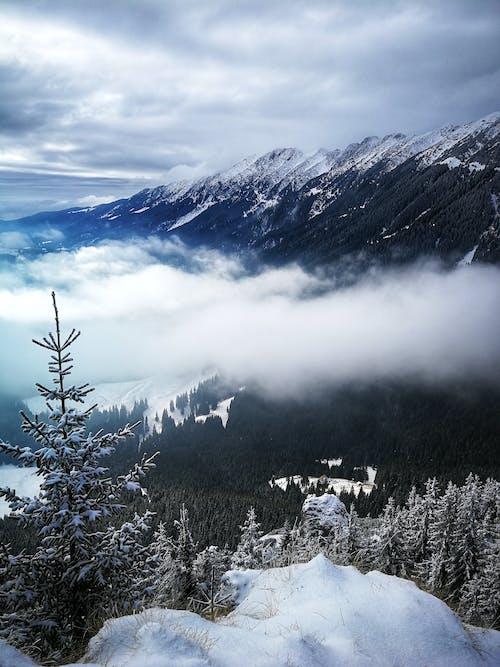 Gratis arkivbilde med fjell, forkjølelse, høy, landskap