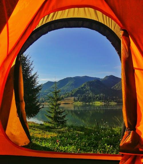 Photos gratuites de arbres, bois, bord de lac, camping
