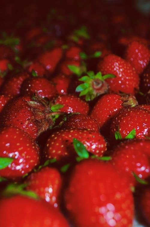 Безкоштовне стокове фото на тему «полуниці, полуниця, свіжі фрукти, фрукт»