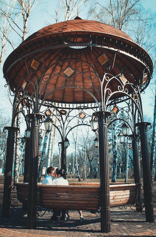 Immagine gratuita di albero, amore, architettura, baciando