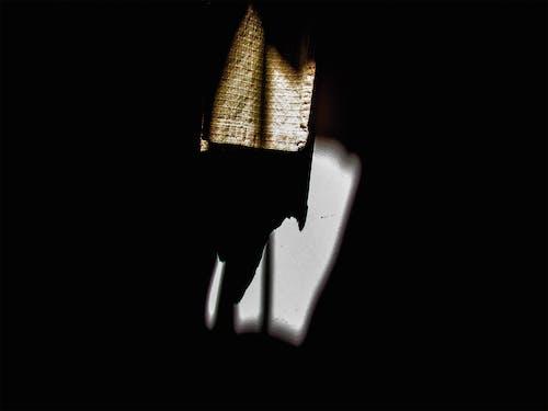 Ilmainen kuvapankkikuva tunnisteilla kevyt, kirkas, Studio, tumma