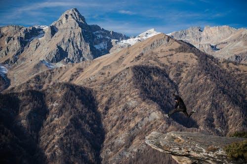 산, 자연의 무료 스톡 사진