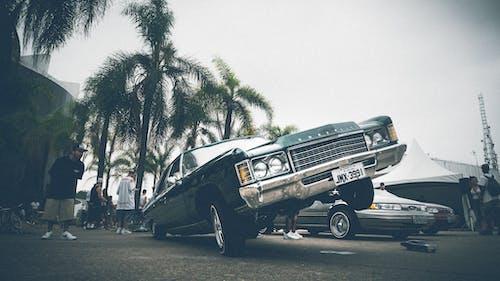 Základová fotografie zdarma na téma auta, chevrolet, denní světlo, dopravní systém