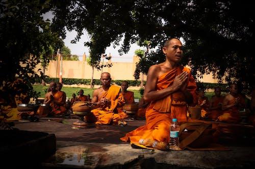 Monks Wearing Orange Robe Mediating