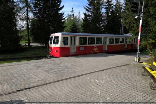 Darmowe zdjęcie z galerii z pociąg, pociąg zębaty, tryb