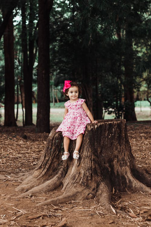 Photo of Cute Little Girl in Pink Floral Dress Sitting on Tree Stump