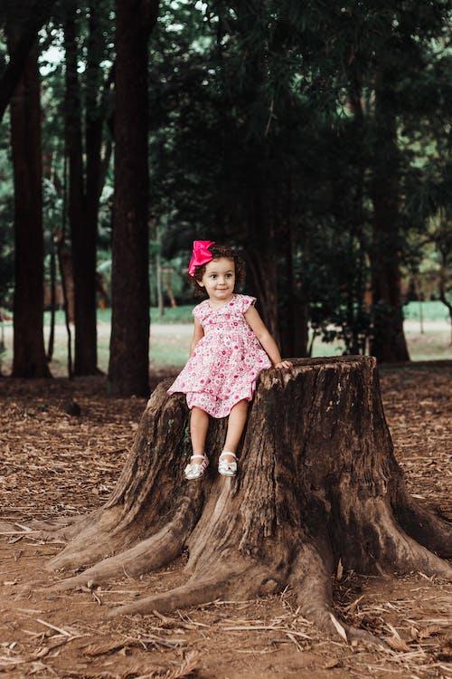 兒童, 可愛, 坐, 女孩 的 免費圖庫相片