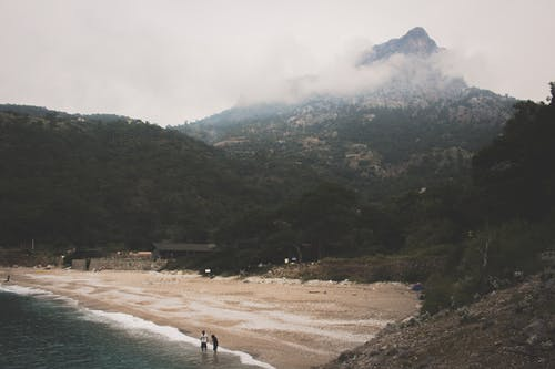 Photo of Beach Near Mountain With Trees