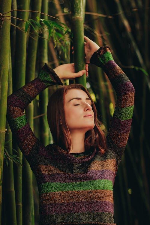 대나무, 모델, 사람, 아름다운의 무료 스톡 사진