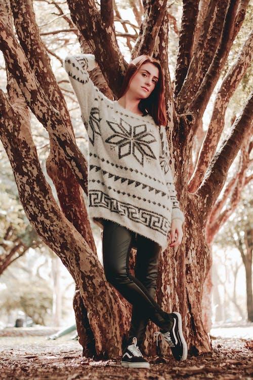 Imagine de stoc gratuită din arbore, atrăgător, cădere, culoarea pielii