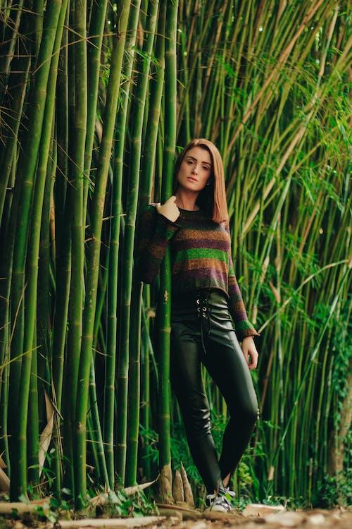 Imagine de stoc gratuită din bambus, femeie, frumos, iarbă
