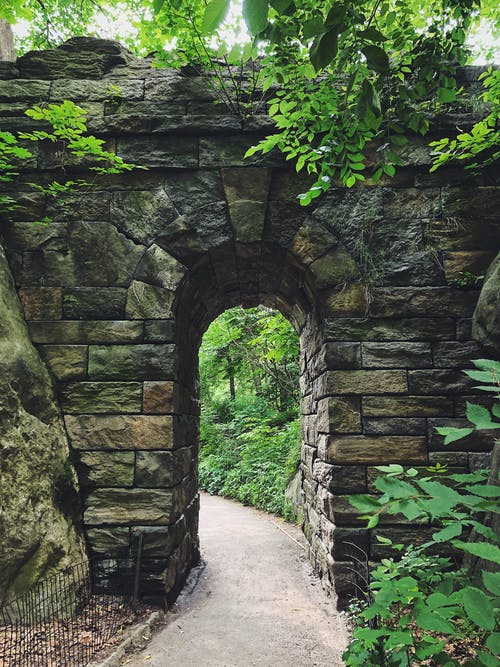 Free stock photo of central park, footpath, new york city