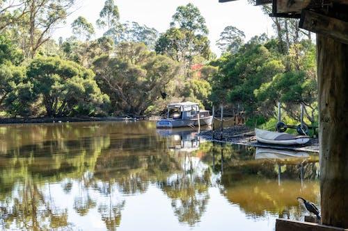 Kostnadsfri bild av båtar, bro, flod, ljusreflektioner
