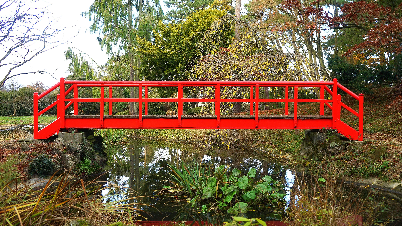 bridge, garden, river