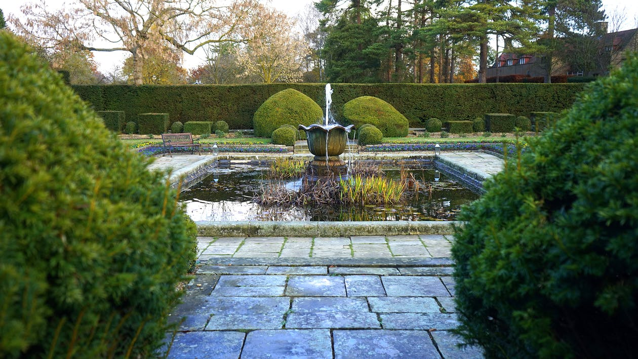Water Fountain Beside Green Leaf Trees