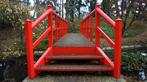Person Showing Red Wooden Bridge