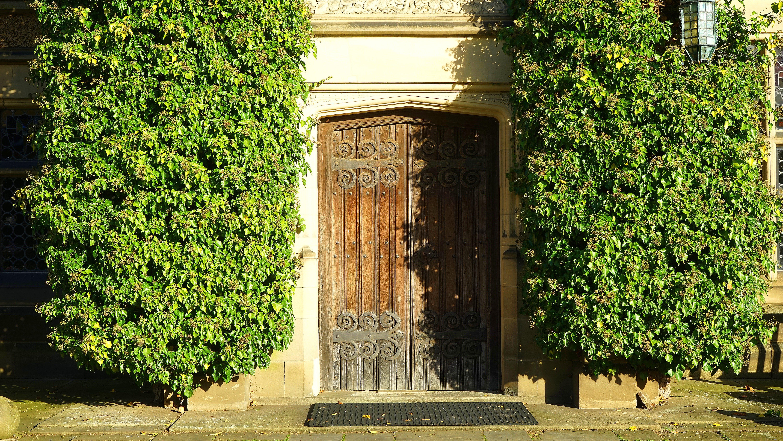 Základová fotografie zdarma na téma denní světlo, dřevo, dveře, exteriér