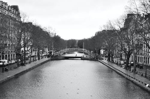 Fotos de stock gratuitas de aguas calmadas, ambiente, arboles, canal