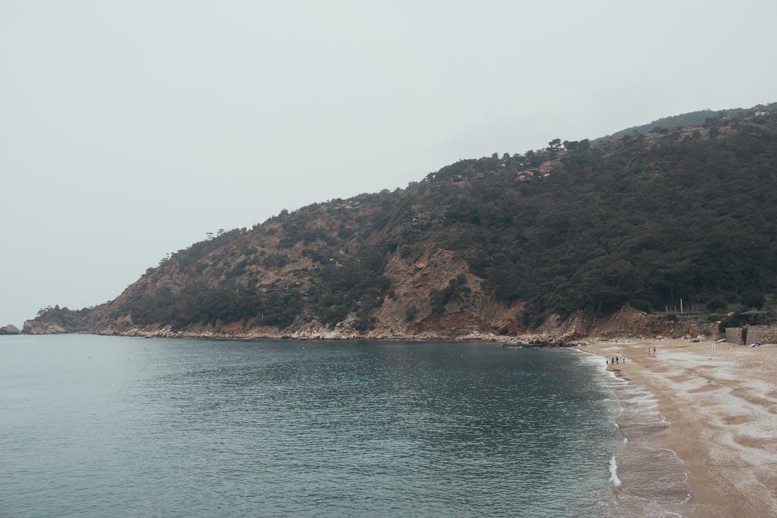 берег моря, відображення, відпустка