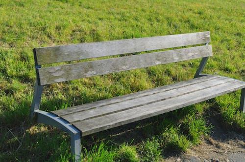 Fotos de stock gratuitas de asiento, banco, césped, de madera