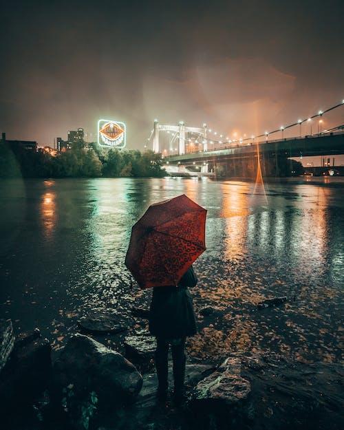 下雨, 傷心, 光反射, 反射 的 免费素材照片