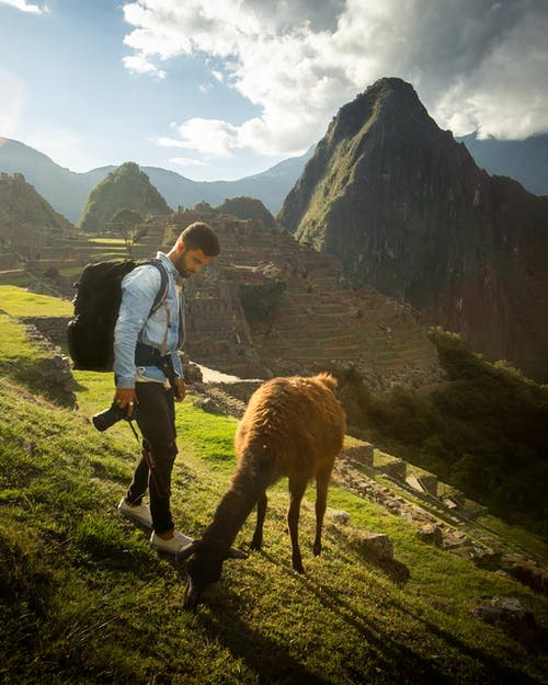 Photo of Man Standing Near Llama