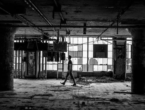 20〜25歳の男, ガラスの窓, ガラス窓, シティの無料の写真素材