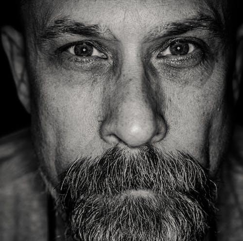 Základová fotografie zdarma na téma černobílá, chloupky na obličeji, dívání, knír