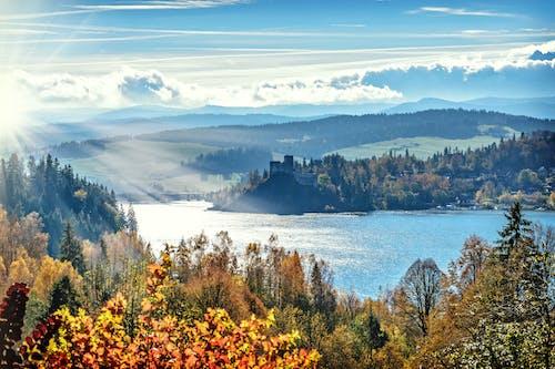 Fotobanka sbezplatnými fotkami na tému borovice, denné svetlo, farebný, hory