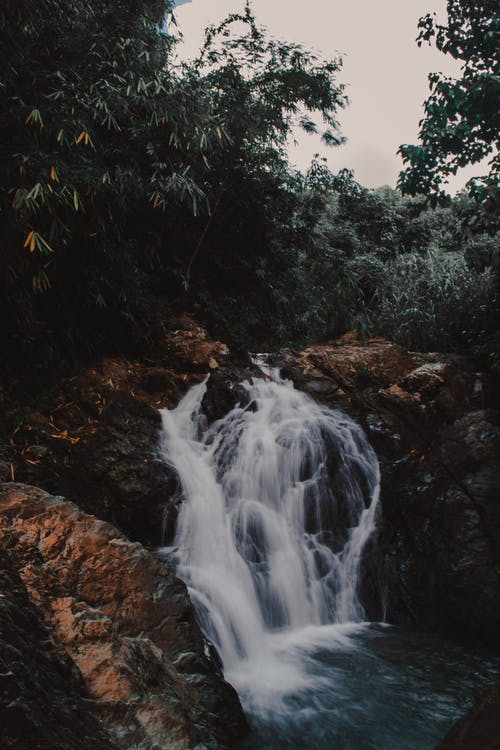 Photo of Waterfalls Surrounded by Trees