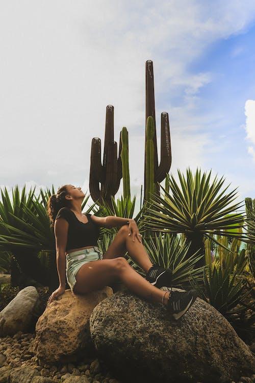 Fotobanka sbezplatnými fotkami na tému dospelý, kaktus, kaktusy, nosiť