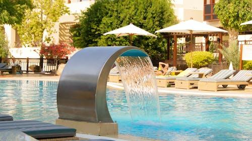 Foto profissional grátis de água, ao lado da piscina, árvores, banhos de sol