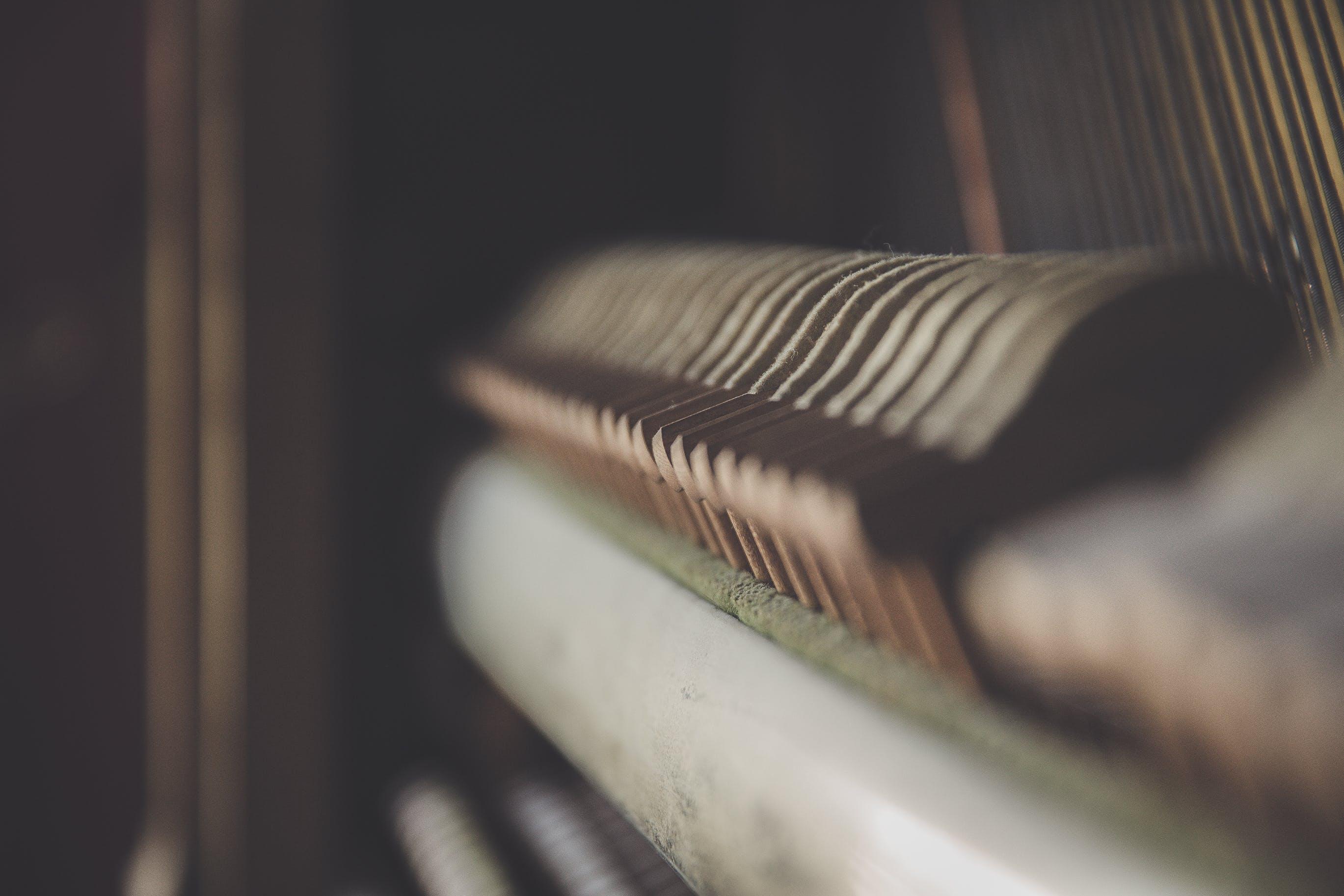 blur, close-up, conceptual
