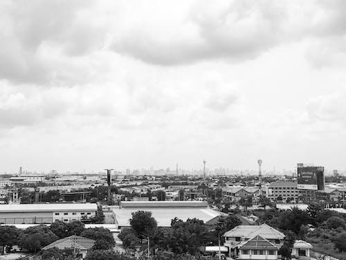 Foto profissional grátis de Bangkok, floresta