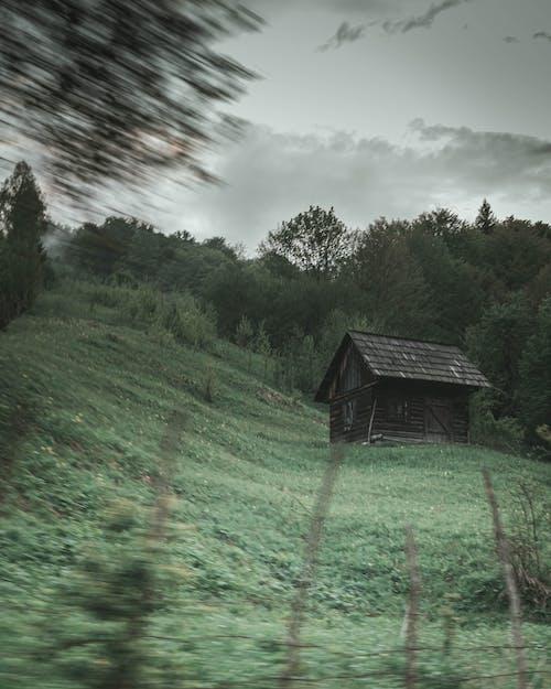 Foto d'estoc gratuïta de bonic paisatge, cabana