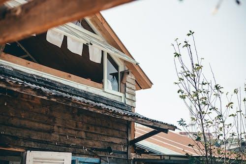 Gratis lagerfoto af træhus, vindue