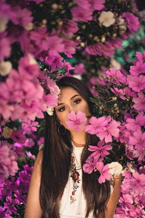 blomster, blomsterblad, blomstre
