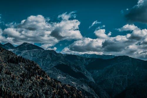 Ingyenes stockfotó ég, fák, felhők, festői témában