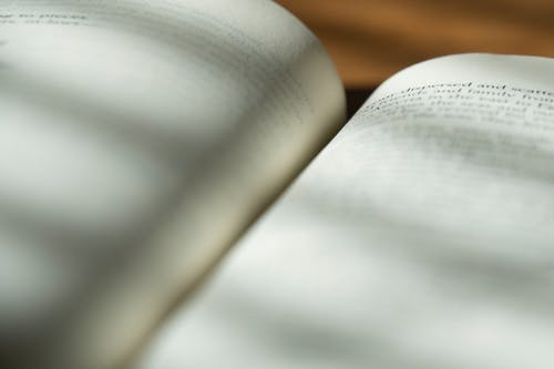Free stock photo of bible, christianity, open book, text